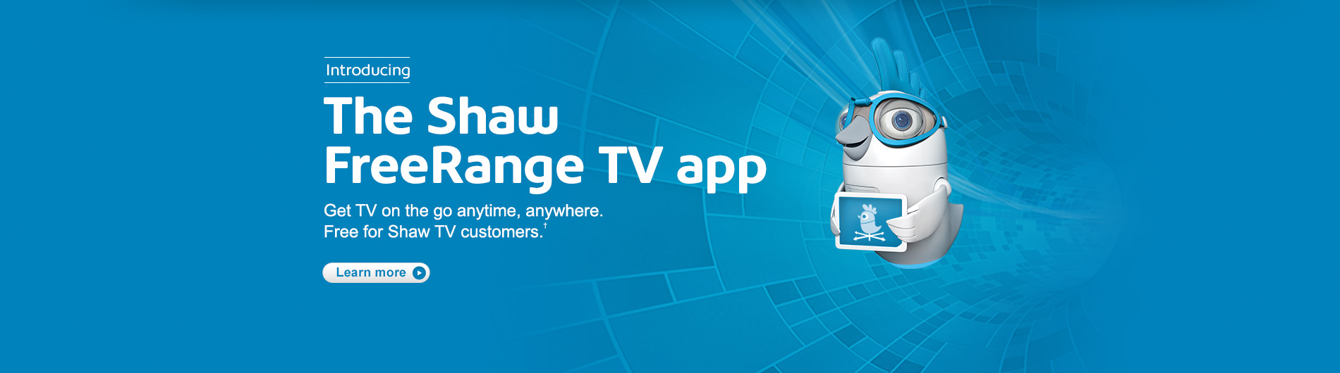 FreeRange TV